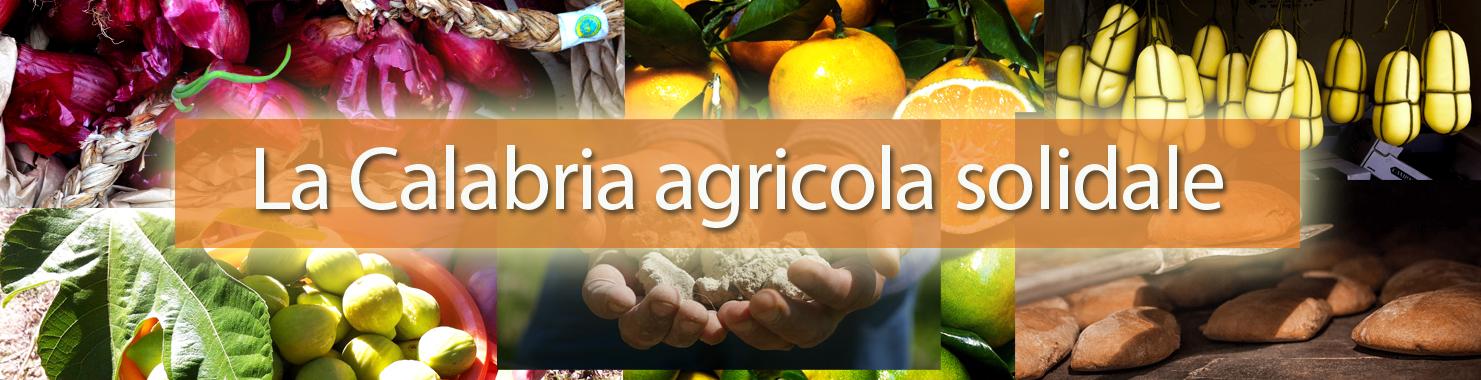 La calabria agricola solidale