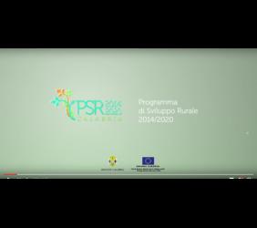PSR Calabria 2014- 2020 | Bandi per misure a superficie 10, 11, 13 e 14